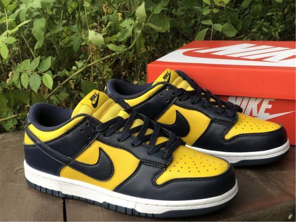 Shop Nike Dunk Low Michigan Training Shoes DD1391-700-1