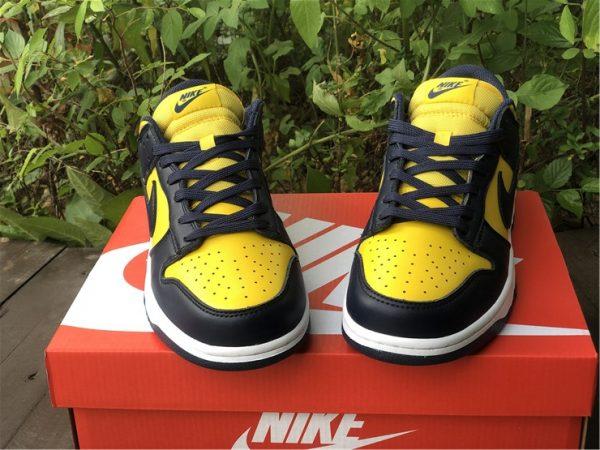 Shop Nike Dunk Low Michigan Training Shoes DD1391-700-4