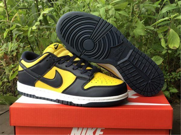 Shop Nike Dunk Low Michigan Training Shoes DD1391-700